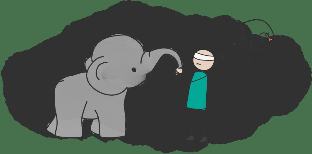 فیل در تاریکی
