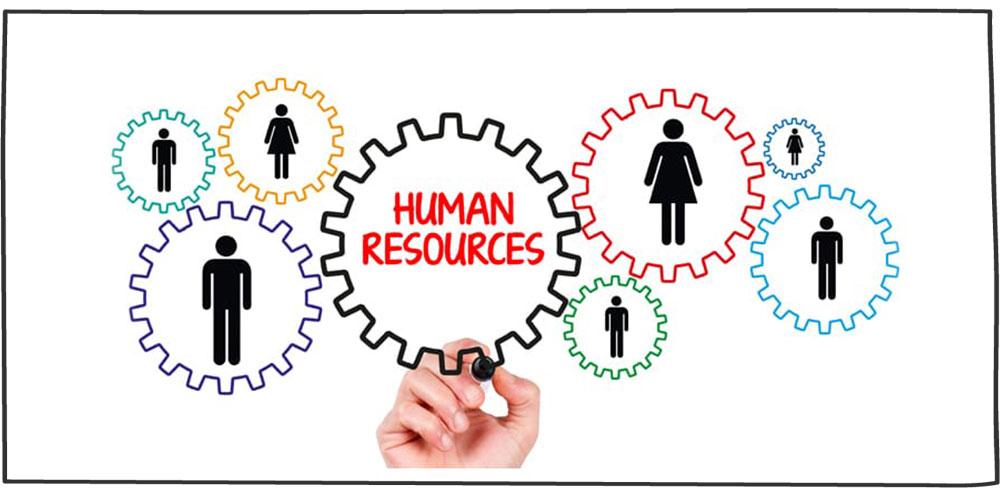 نقش منابع انسانی در سازمان