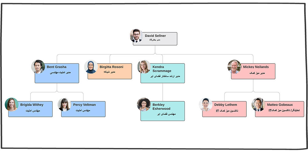 ساختار سازمانی عملکردی