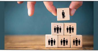 ساختار سازمانی چیست؟